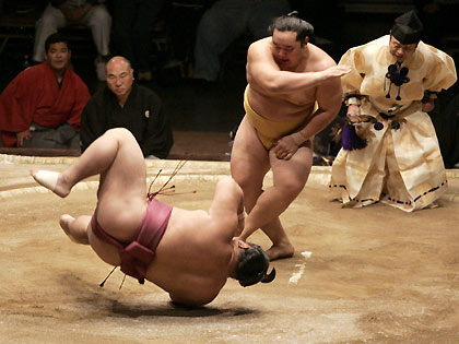 grand-sumo-ipad